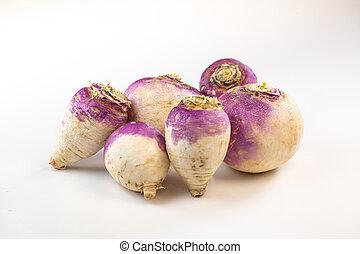 Freshly harvested spring turnips, Brassica rapa, on white background, France