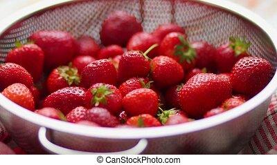 Freshly harvested strawberries. Metal colander filled with ...