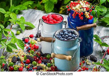 Freshly harvested wild berry fruits