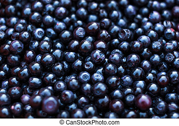 Freshly picked blueberries - A lot of freshly picked blue...