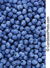 Freshly Picked Blueberries - Pattern of freshly picked...
