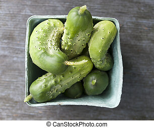 Freshly picked cucumbers - Box of freshly picked garden...