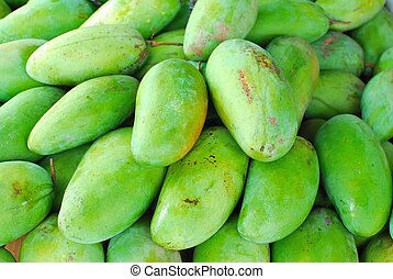 Freshly picked green mangos. Mangos are well known tropical ...