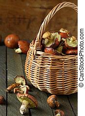 freshly picked mushrooms in a wicker basket