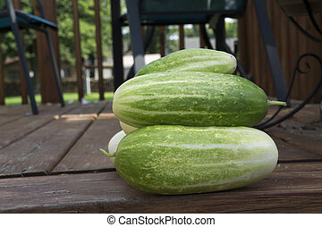 Freshly Picked Organic Cucumbers