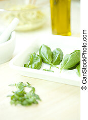 Freshly picked sweet basil