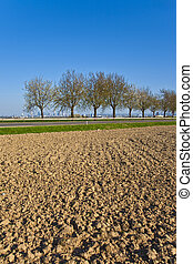 freshly plowed acre with row of trees at the horizon