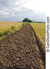 Freshly plowed field furrow.