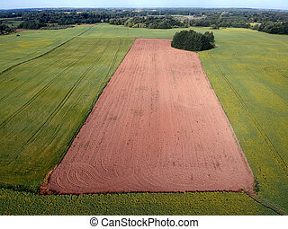 Freshly plowed summer  field, aerial view