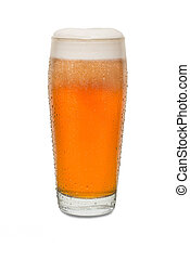Freshly Poured Craft Pub Beer Glass #4 with Condensation