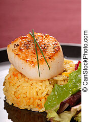 Freshly seared sea scallop on saffron rice