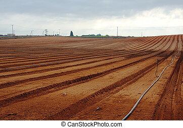 Freshly tilled farm field ready for planting