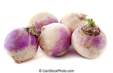 freshly harvested spring turnips (Brassica rapa) on a white background