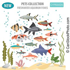 Freshwater aquarium fishes breeds icon set flat style...