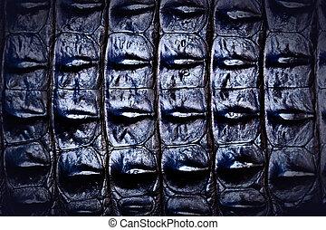 Freshwater crocodile texture background. - Full Frame...
