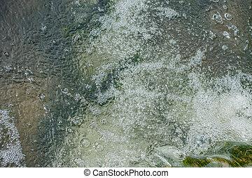Freshwater Stream Closeup