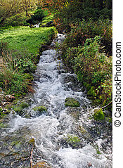 freshwater stream with small waterfall