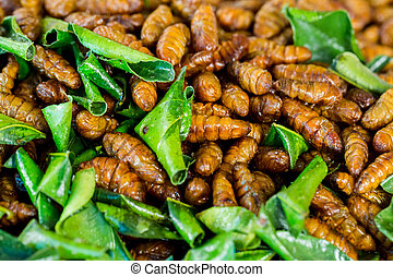 fried bug with kaffir lime leaf in a pan insects popular ...