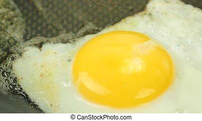 Fried egg - close up -