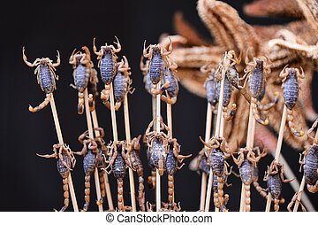 fried insects and scorpions as snack street food in China, Beijing