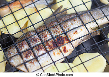 Fried sea bass with potatoes on the grill