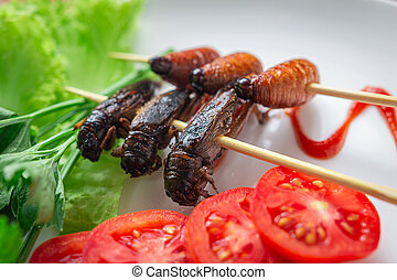 Fried Worm, Insect food in the skewer. Closeup, Selective ...