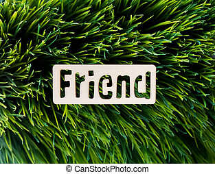 friend. Wood letters on grass background