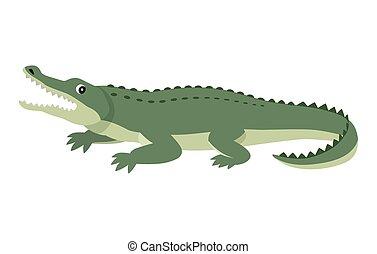 Friendly cute green alligator, funny wild animal