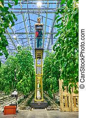 Friendly farmer working on hydraulic scissors lift platform in g