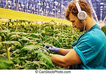 Friendly farmer working on hydraulic scissors lift platform in greenhouse