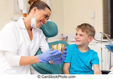 female dentist explaining teeth model to little patient