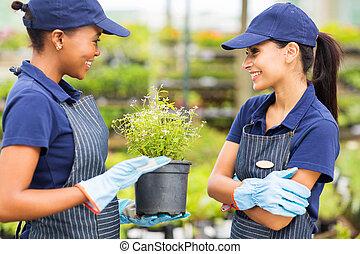 female nursery worker talking to colleague