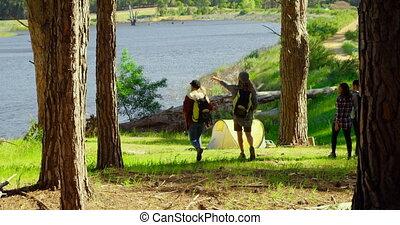 friends, гулять пешком, посмотреть, лес, группа, задний, 4k