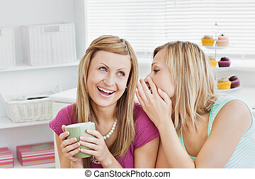 friends, bohnenkaffee, schließen, daheim, weibliche , sprechende , wohnzimmer, becher, zusammen