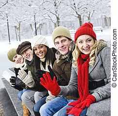 friends, draußen, gruppe, winter