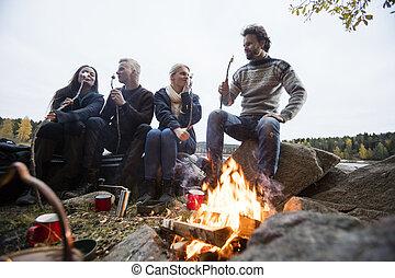 Friends Eating Marshmallows Near Campfire - Multiethnic...