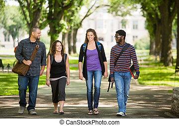 friends, gehen, auf, campus, straße