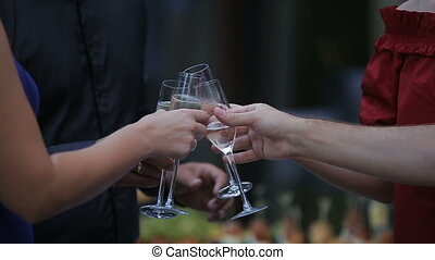 Friends Having Wine Toasting Clinking Wine Glasses Sophisticated Dinner Party Holiday Vacation Travel Happy Birthday Celebration Festive Concept