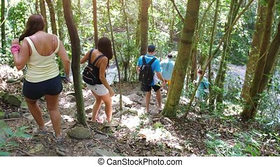 Friends hiking outdoors on nature. Tourists with a backpacks traveling through a jungle forest in sunny day. slow motion.