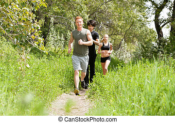 Friends jogging in the forest