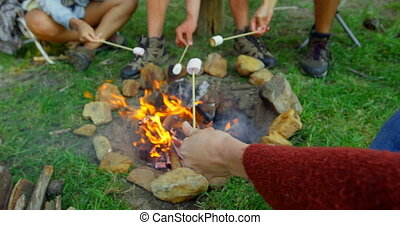 Friends roasting marshmallow on campfire 4k - Friends ...