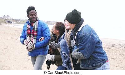Friends Walking Along A Winter Beach - A group of friends...