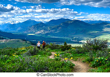 Friends walking on meadows in North Cascades National Park.