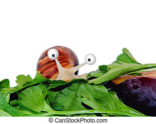 Frightened funny snail looks out of parsley