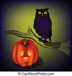 Frightened pumpkin looking up at owl on branch