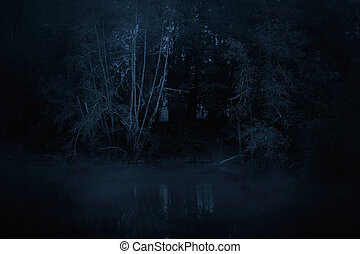 Mysterious and frightening river in a foggy night