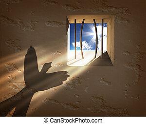frihed, concept., går fri, fængsel