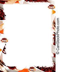 frijoles, rojo, otoño