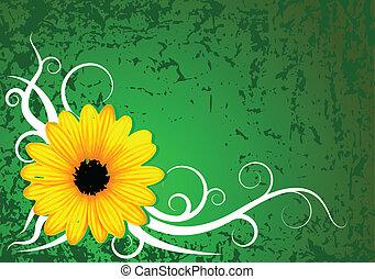 fris, bloem, grunge, achtergrond