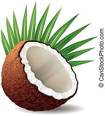 fris, cocosnoot, witte , bladeren, vrijstaand